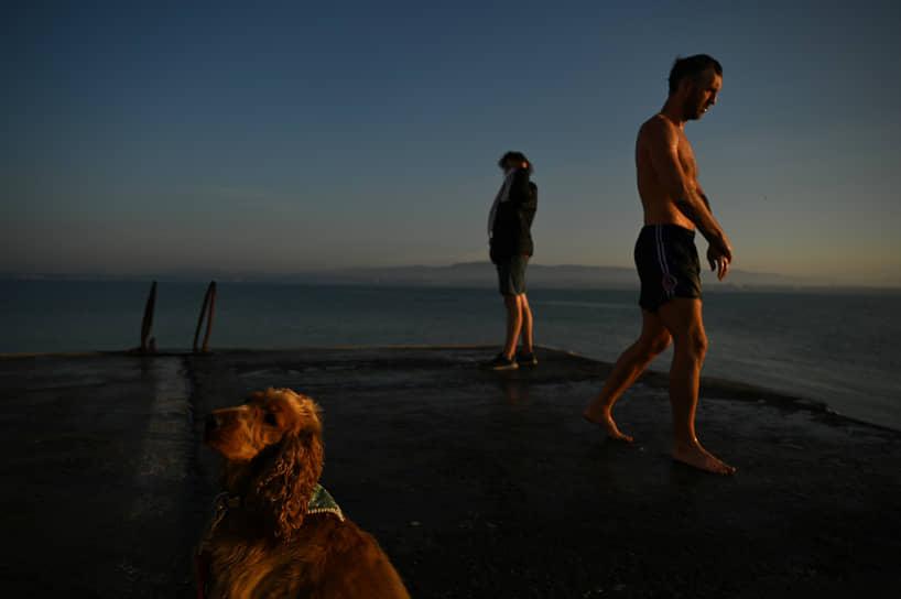 Дублин, Ирландия. Собака и купающиеся в заливе