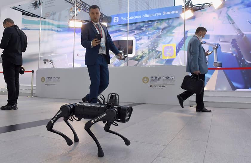 Петербургский международный экономический форум проходит в конгрессно-выставочном центре «Экспофорум» <br>На фото: робопес, разработанный китайской компанией Unitree Robotics и представленный на ПМЭФ «Эр-Телекомом»