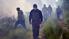 Дым Якутии вышел за границы Евразии