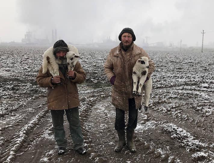 Иштван Керекеш, Венгрия. Трансильванские пастухи. Обладатель Гран-при