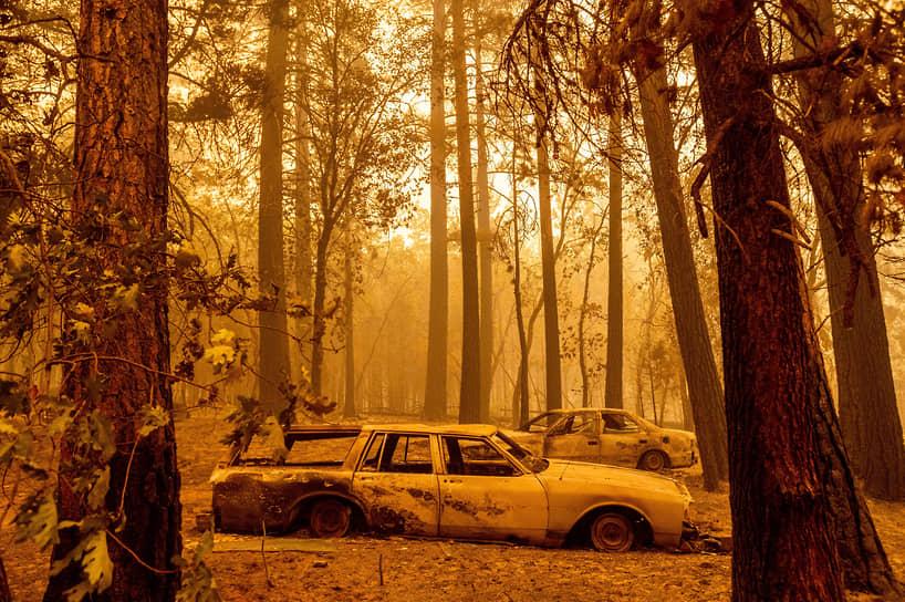 Калифорния, США. Сгоревшие в результате пожаров автомобили