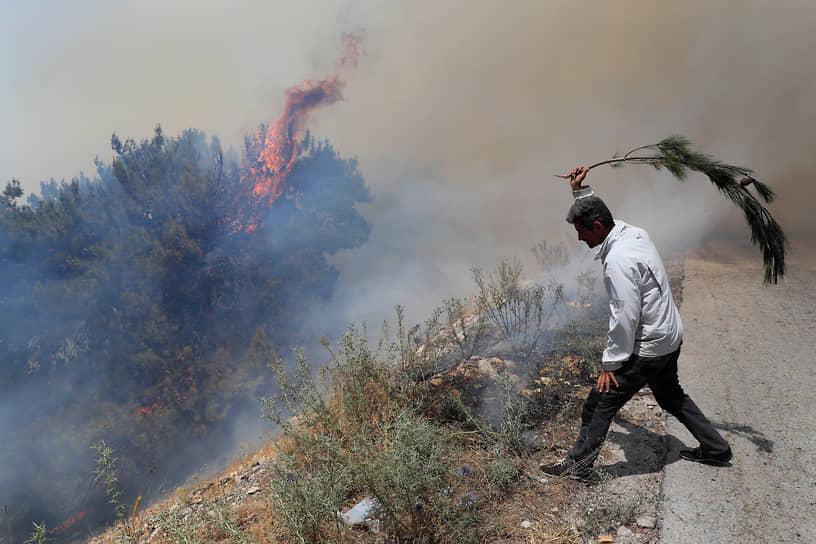 Ливан. Лесной пожар в северной провинции Аккар