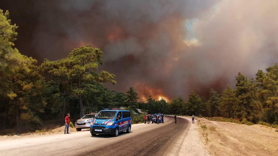 Министр сельского и лесного хозяйства Турции Бекир Пакдемирли сообщил, что пострадали уже 53 человека, большинство из них надышались дымом. По последним данным, погибли четыре человека