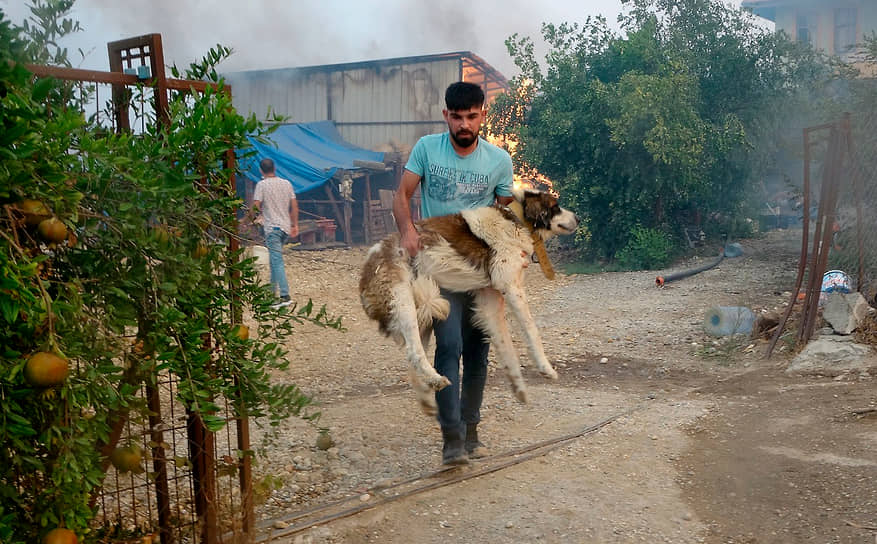Мужчина несет на руках собаку, которую спас из горящего дома