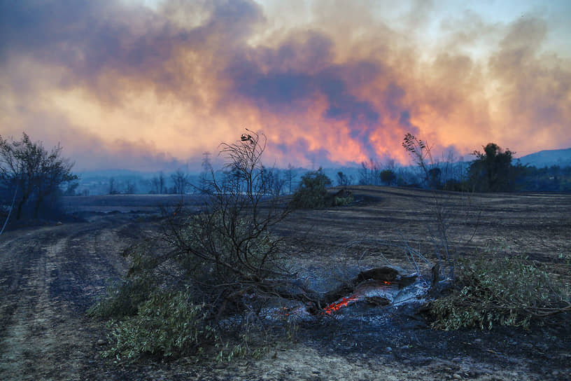 В тушении возгорания задействованы самолет, 19 вертолетов, 6 бульдозеров, 103 пожарные машины, а также почти 1 тыс. человек