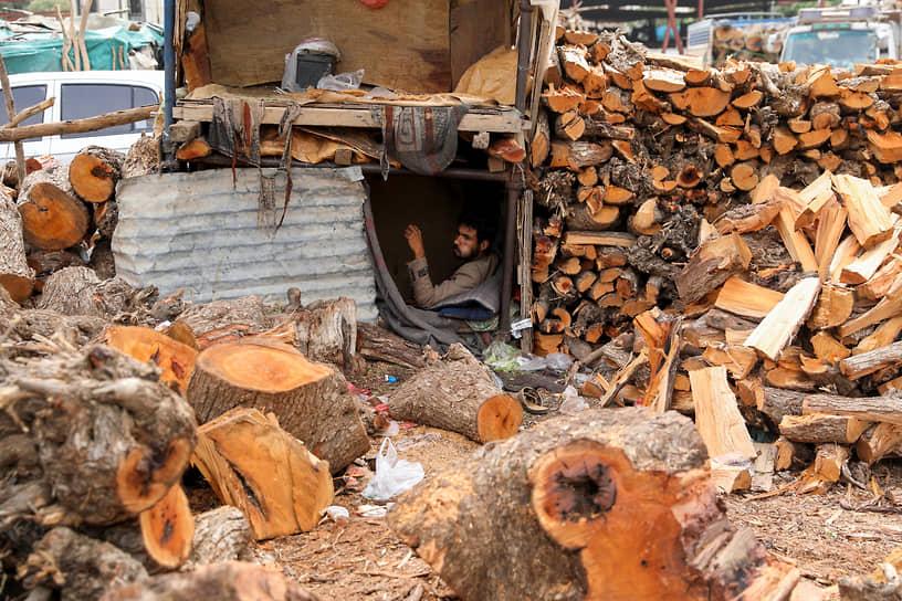 Сана, Йемен. Продавец ждет покупателей на рынке дров