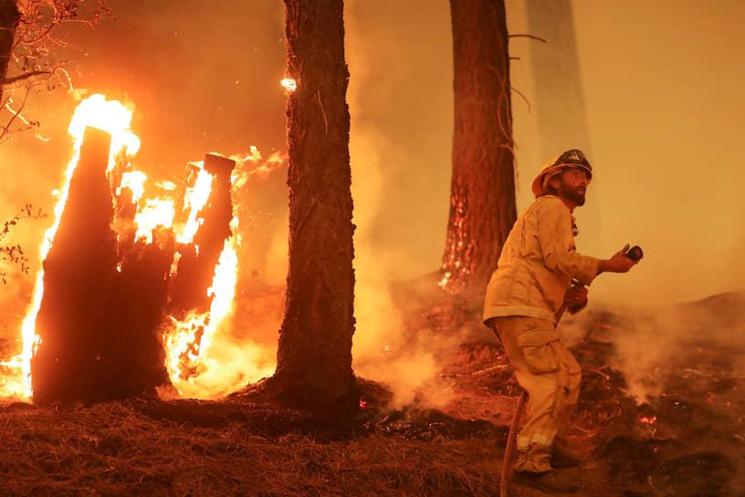 Тейлорсвилль, США. Пожарный пытается удержать линию лесного пожара