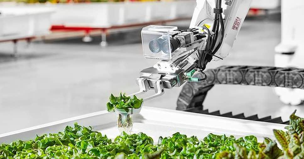 Роботизированная рука компании Iron Ox