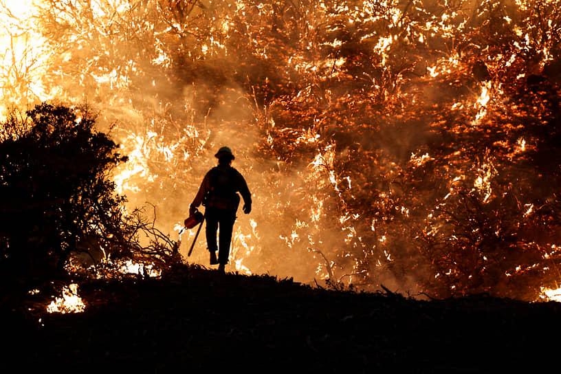 Гризли Флэтс, штат Калифорния, США. Пожарный за работой
