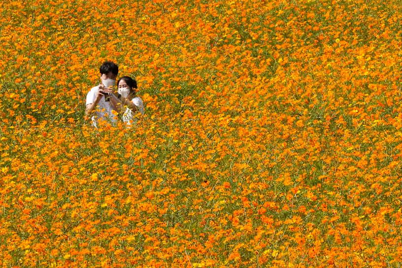Сеул, Южная Корея. Пара в масках делает селфи в Олимпийском парке
