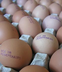 Куриные яйца с призывом «Все на референдум» поступили в продажу на Камчатке. Фото: ITAR-TASS. Загружается с сайта Ъ