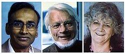 Нобелевский комитет полез в клетку // Названы лауреаты премии по химии