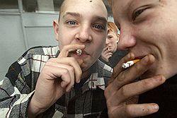 Табаку нашли дело // Начато первое уголовное преследование за продажу курительных смесей