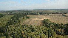 Москву обложили сухими дровами