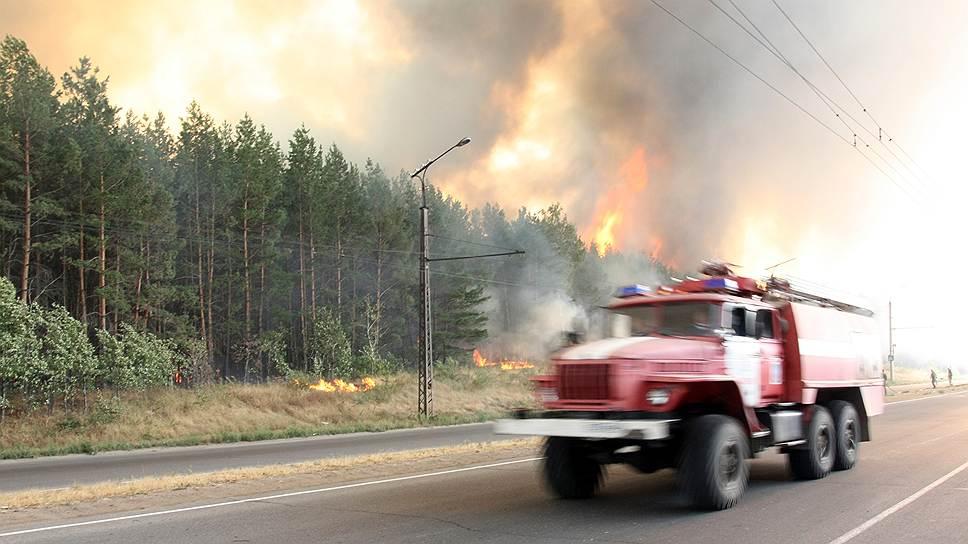 Почему экологи недовольны новыми правилами противопожарного режима