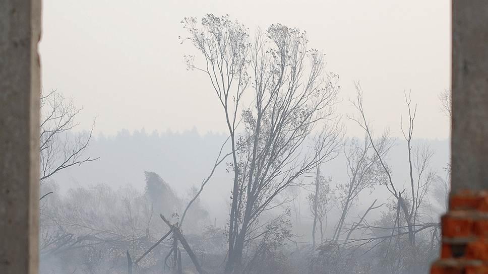 В 2010 году в России огонь охватил 200 тыс. га в 20 регионах, погибло около полусотни человек. Специалисты МЧС прогнозируют, что в 2014 году ситуация может быть еще хуже