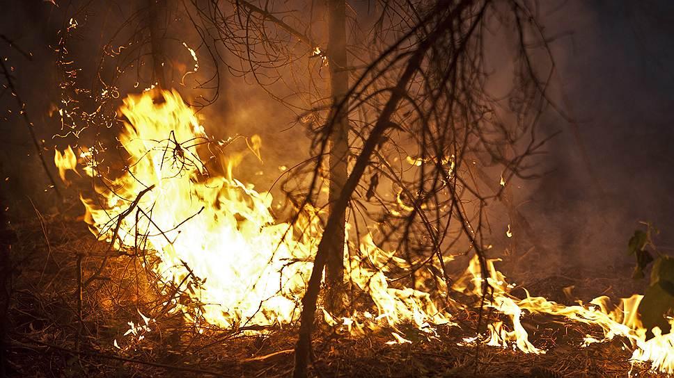Как в России готовят почва для пожаров