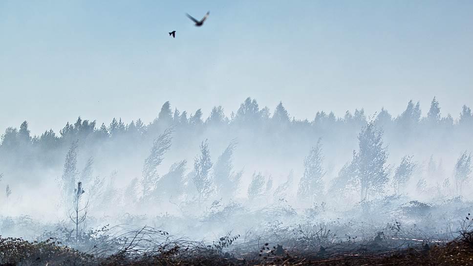 Треть регионов не готова к огнеопасному сезону