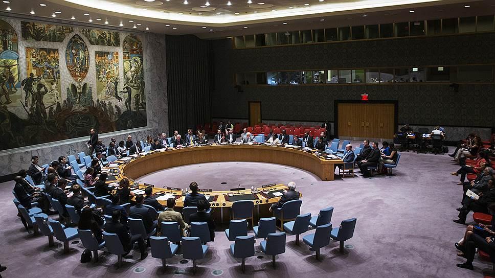Как Общественная палата РФ ищет поддержки в ООН