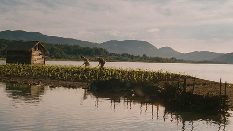 Фильм «Кукурузный остров» Георгия Овашвили, получивший главный приз на «Киношоке», в своей жанровой нише является практически безупречным эталоном артхаусной притчи