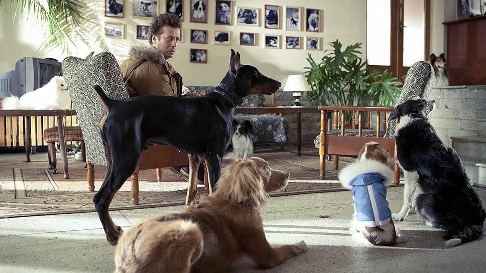 В «Елках лохматых» собаки свои партии исполняют безупречно, и с ними нелегко тягаться людям