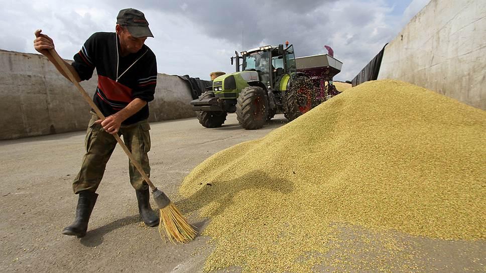 Как зерно готовили к интервенциям