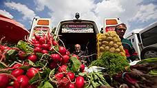 Своевременные овощевыводы