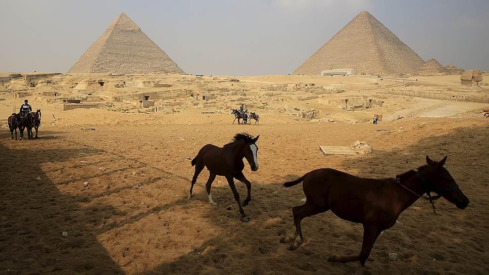 Египет впишут в текущий бюджет / Первый миллиард рублей компенсаций может быть получен уже в этом году