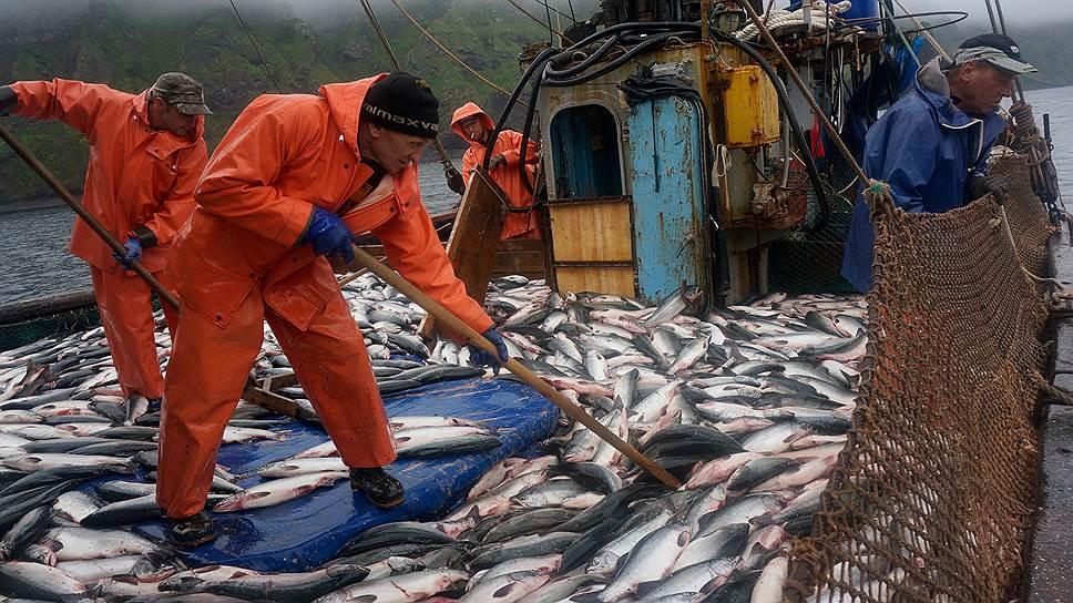 Почему рыбная отрасль не оправдала ожиданий