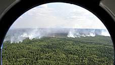 Четверть лесов России можно не тушить