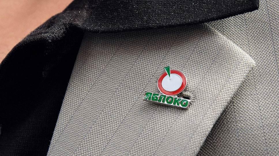 Как ЦИК счел отказ в регистрации «Яблока» в Нижнем Новгороде немотивированным