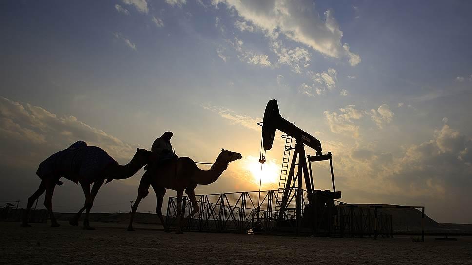 Почему слов ОПЕК о сокращении добычи нефти рынку хватит на два месяца