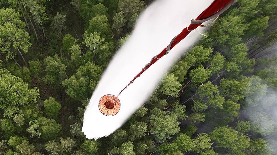 Рослесхоз пообещал раскрыть данные о лесной отрасли