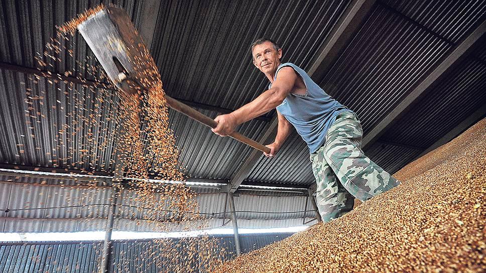 Новые турецкие пошлины могут оставить почти половину российского экспортного зерна в закромах Родины