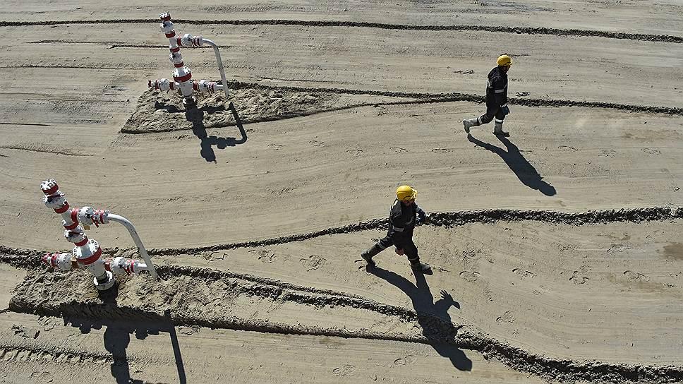 «Роснефть» показала правительству финансовую модель ВНХК