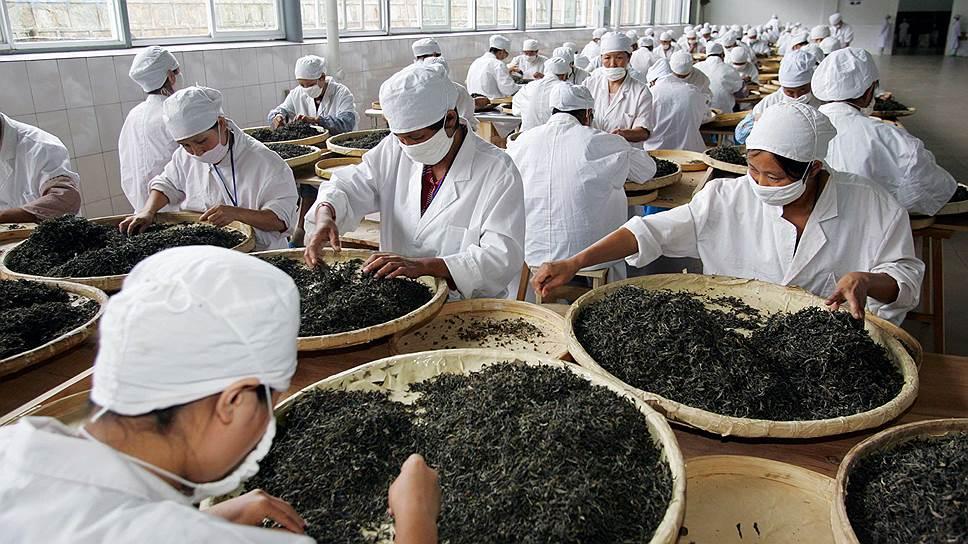 Китайский чай, ценимый в России, теперь будет упаковываться и в Подмосковье