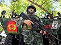 Мусульмане рохинджа разделили Азию // Проблема национального меньшинства Мьянмы раскалывает АСЕАН