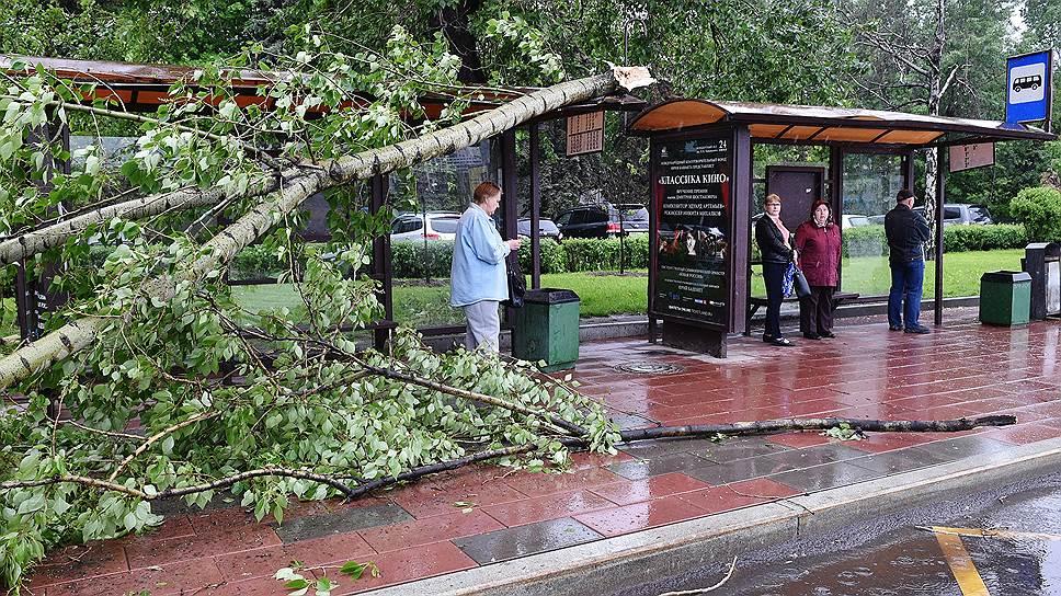 Из-за урагана в Москве погибли более десяти человек