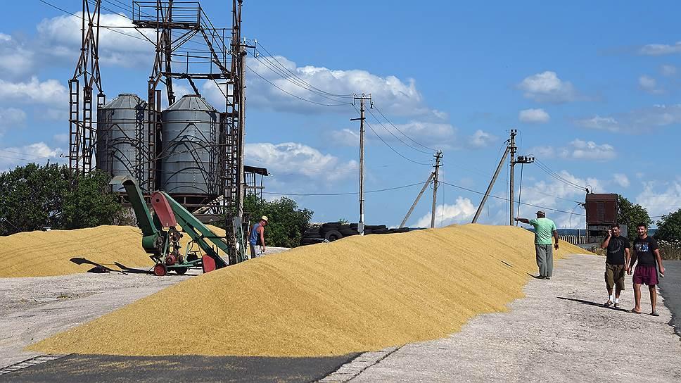 Власти разрешат экспорт зерна из интервенционного фонда