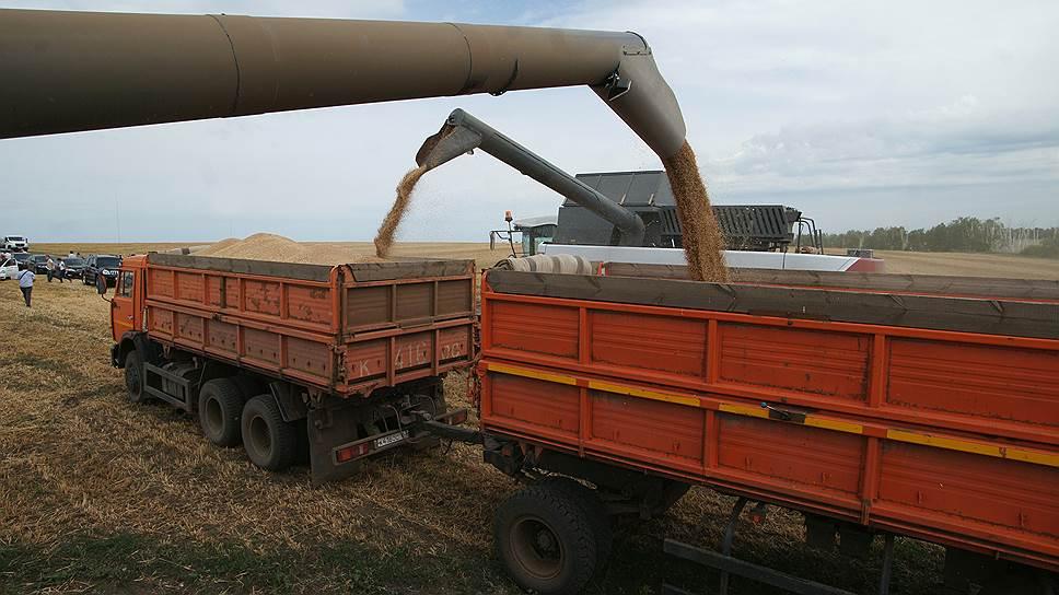 Экспортные котировки на российскую пшеницу обвалились на ожиданиях рекордного урожая