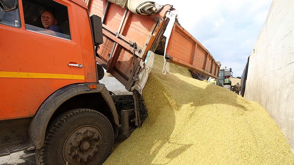 Цены на зерно на внутреннем рынке просели под давлением обильного урожая