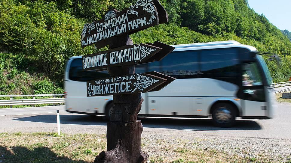 Из Сочинского национального парка уезжают не только посетители, но и деревья ценных пород
