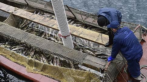 От рыбы уплывает прибыль // По отрасли она упала впервые с 2014 года