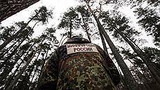 В лесах дрова вытесняют бревна