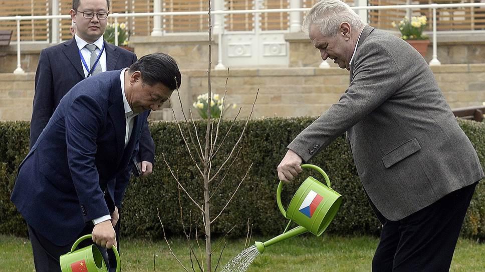 Немецкие эксперты уверены, что вместе с ростом китайских инвестиций в Европе неуклонно растет и влияние КНР (на фото: китайский лидер Си Цзиньпин и президент Чехии Милош Земан)