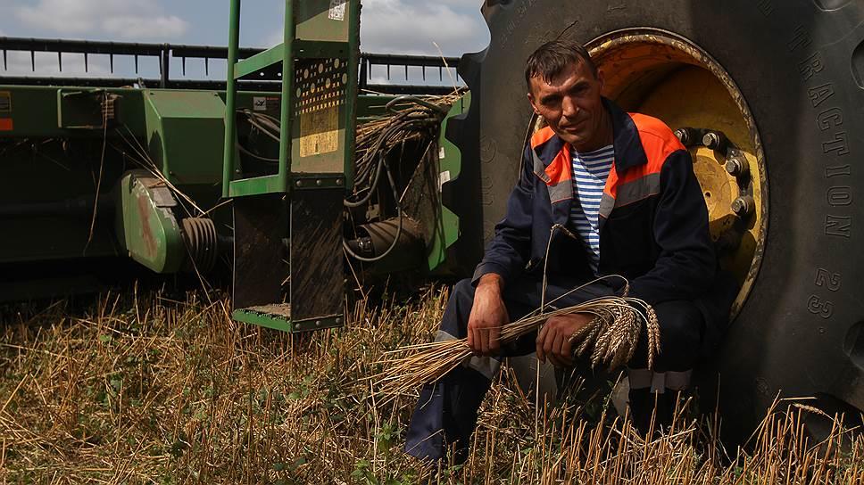 За счет каких поставок Россия может побить рекорд экспорта зерна