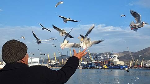 Новороссийский порт получил персональный запрос // ФАС требует от стивидора отчет по тарифам за два года