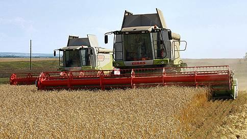Закрома доллара // Падение рубля подняло цены на пшеницу на внутреннем рынке