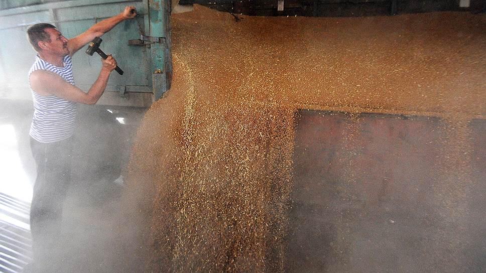 Экспортные цены на российскую пшеницу обновили трехлетние максимумы