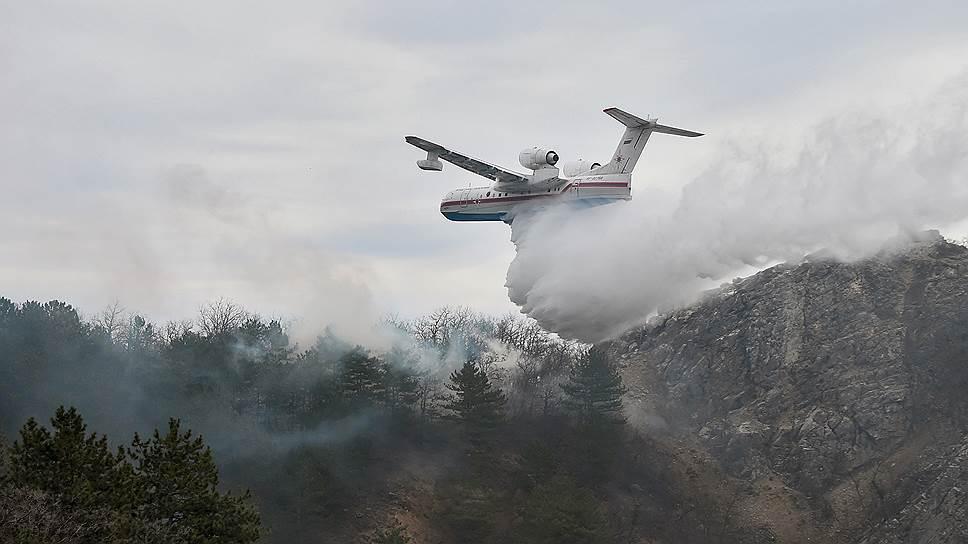 Почему в правительстве считают «вопиющей» ситуацию с природными пожарами